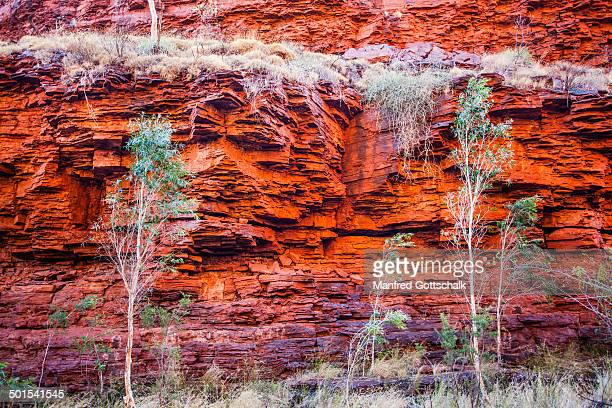 red cliff face at weano gorge - rock strata stock pictures, royalty-free photos & images