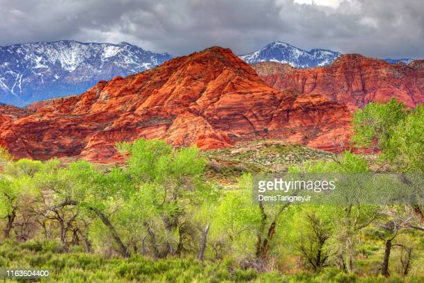 red cliffs recreation area near st. george - st. george utah stock pictures, royalty-free photos & images