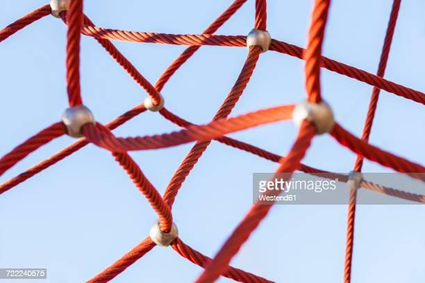Red climbing net