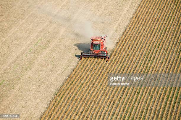 red combine harvesting fall soybean field aerial - gewas stockfoto's en -beelden