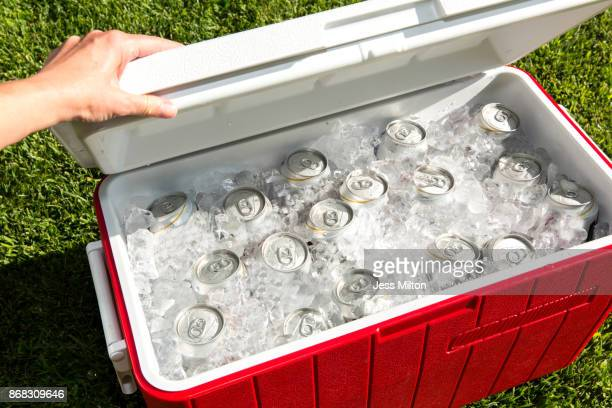 Red cooler filled with beverage cans