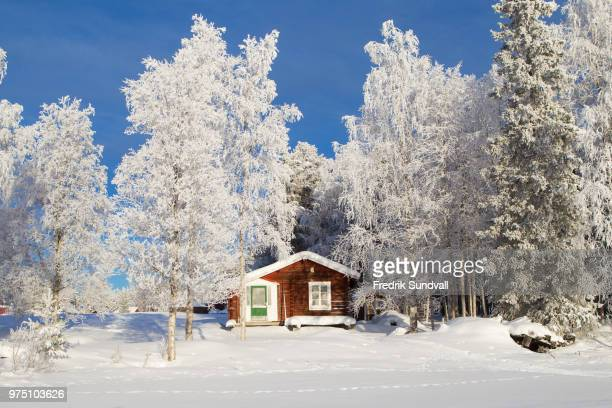 Red cottage in field, Pjesker, Lappland, Sweden