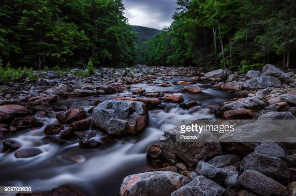 red creek in dolly sods wilderness - monongahela national forest stock photos and pictures