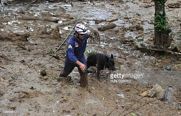 A Red Cross rescue member looks for victims with his dog at San Antonio de Escazu village after a landslide in the outskirts of San Jose Costa Rica...