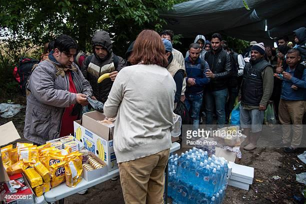 BORDER BAPSKA SYRMIA CROATIA Red Cross volunteers offer food and water to refugees