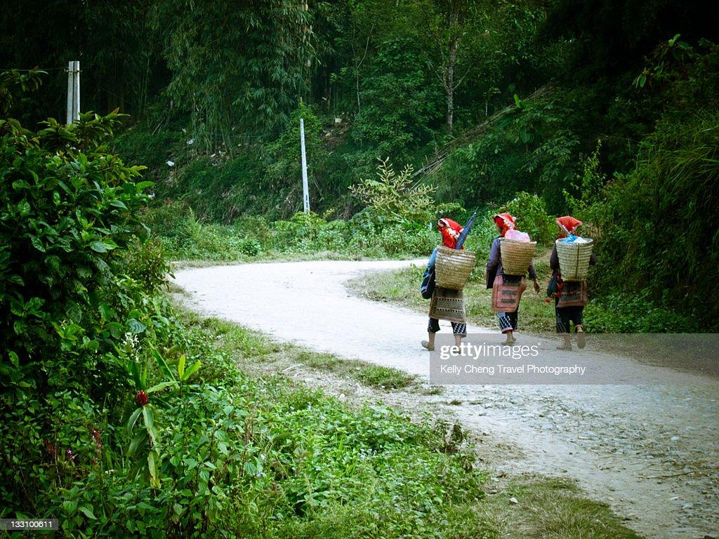 Red Dao women : Stock Photo