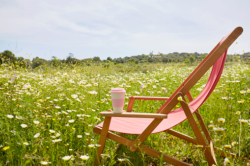 Red deck chair with coffee cup in a flower meadow - gettyimageskorea