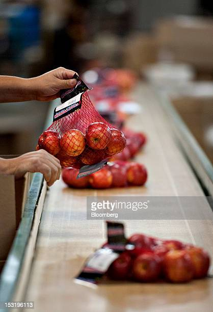 Red Delicious apples are packaged at Jack Brown Produce Inc in Sparta Michigan US on Thursday Sept 27 2012 John Schaefer president of Jack Brown...