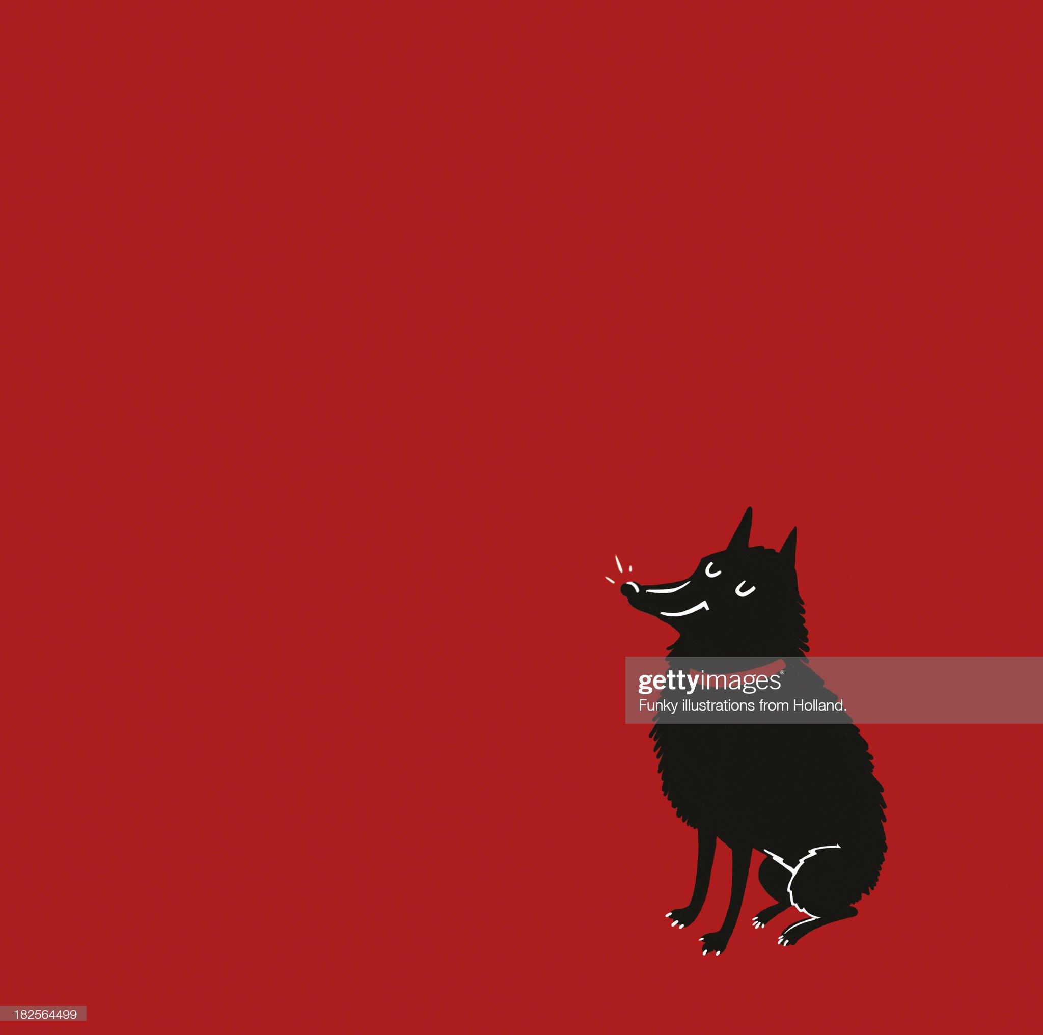 Red dog. : Stock Photo