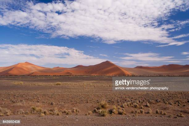 red dunes along the sossusvlei road. - namib naukluft national park stock pictures, royalty-free photos & images