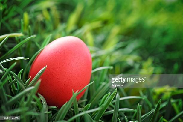 Rojo huevo de pascua