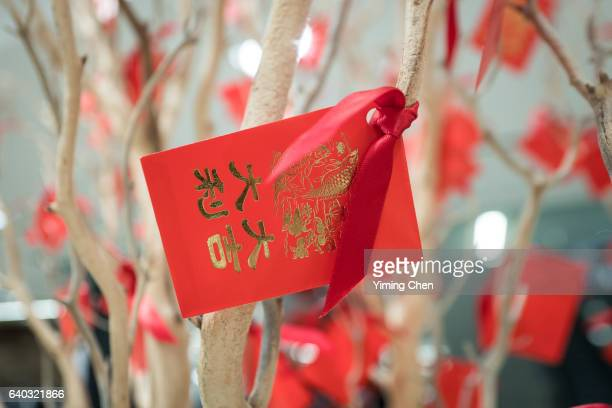 Red Envelope for Chinese New Year