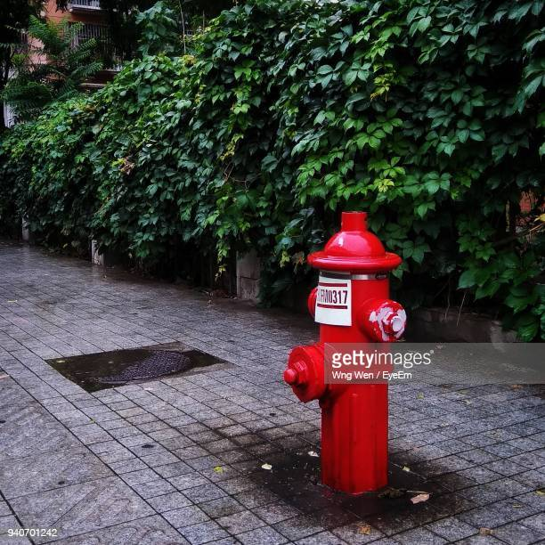 Red Fire Hydrant By Plants On Footpath