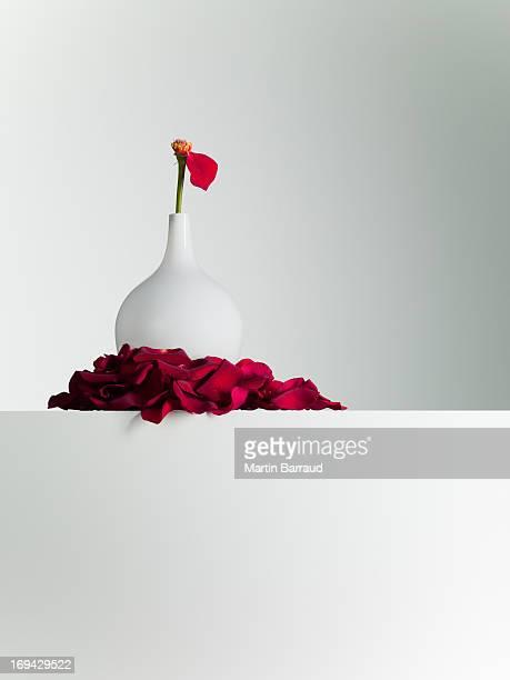 レッドの花びらのステムに花瓶から落ちる