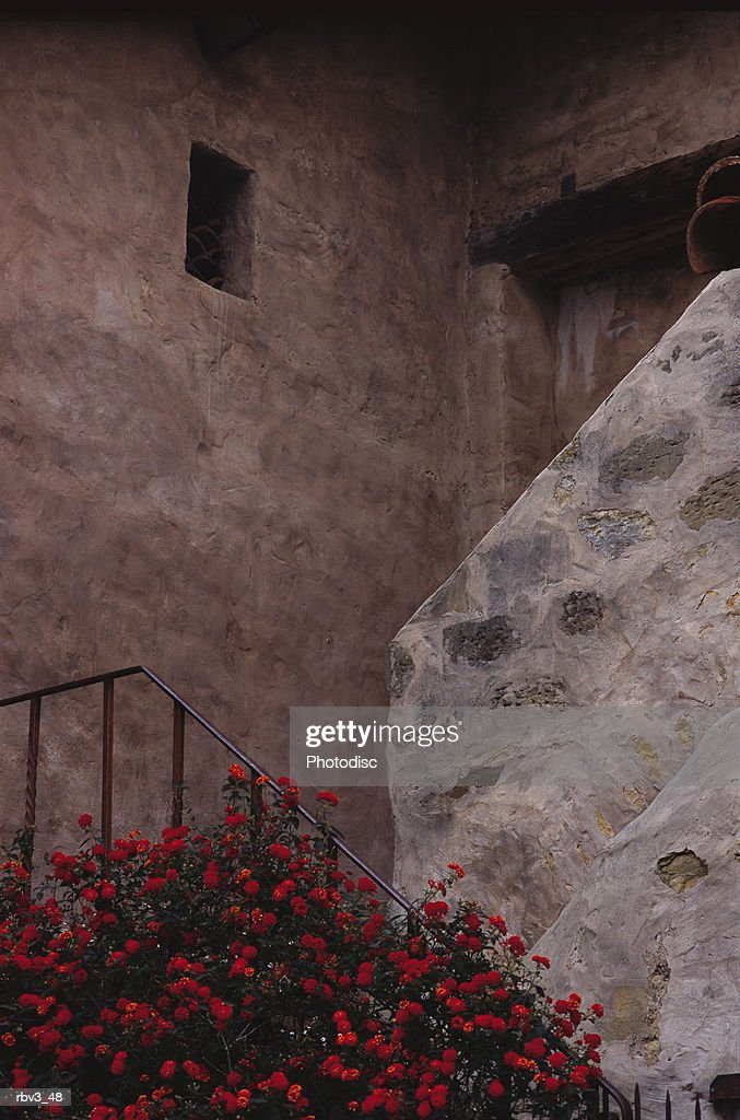 red flowers cover the railing to a set of old stone stairs above which there is a window : Foto de stock