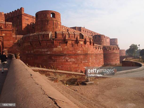 red fort - agra fort stock pictures, royalty-free photos & images