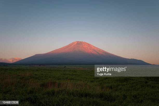 Red Fuji over the Meadow