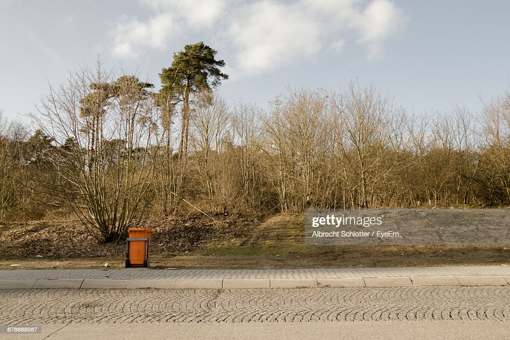 Red Garbage Can On Footpath By Bare Trees : Stock-Foto