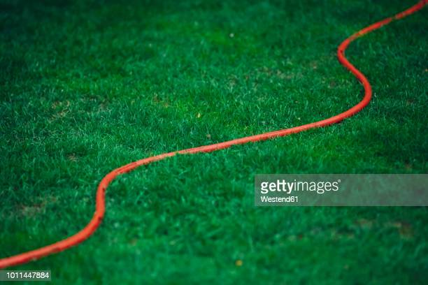 Red garden hose on green lawn