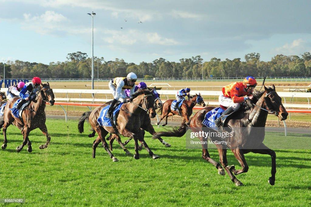 Red Gateau ridden by Arron Lynch wins the Thanks & Goodbye Anne John 0 - 58 Handicap at Seymour Racecourse on August 19, 2017 in Seymour, Australia.