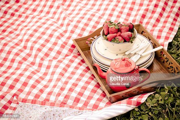 Red gingham pattern picnic towel with tray for tea