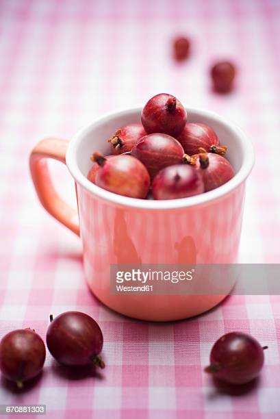 Red gooseberries in a cup