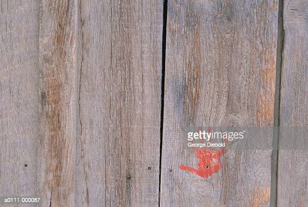 Red Handprint on Wood