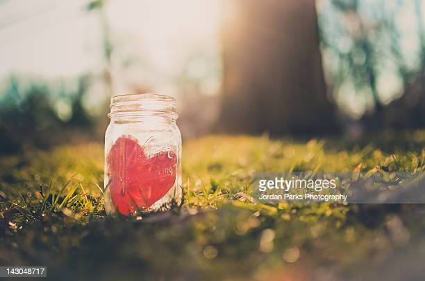 red heart in mason jar - jordan love stock pictures, royalty-free photos & images