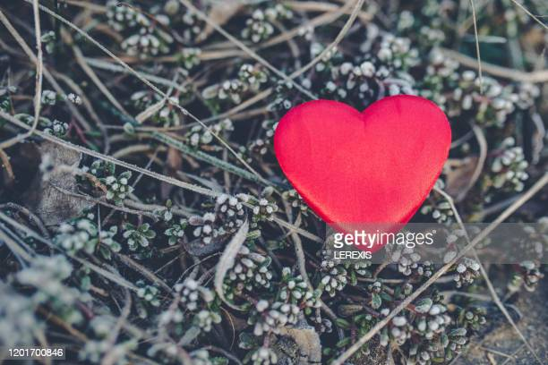 762 Love You Wallpaper Photos And Premium High Res Pictures Getty Images