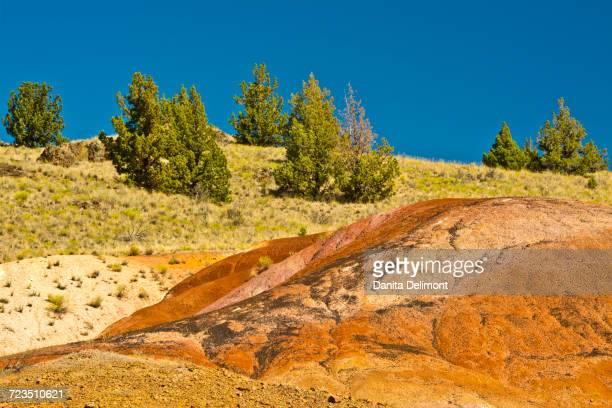 red hill trail, painted hills, john day fossil beds national monument, mitchell, oregon, usa - hügelkette stock-fotos und bilder