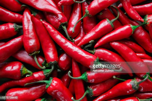 red hot chili peppers. stack of vegetables. - red chili pepper stock pictures, royalty-free photos & images