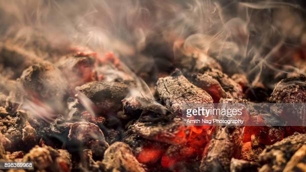 red hot embers - chicken masala stock photos and pictures