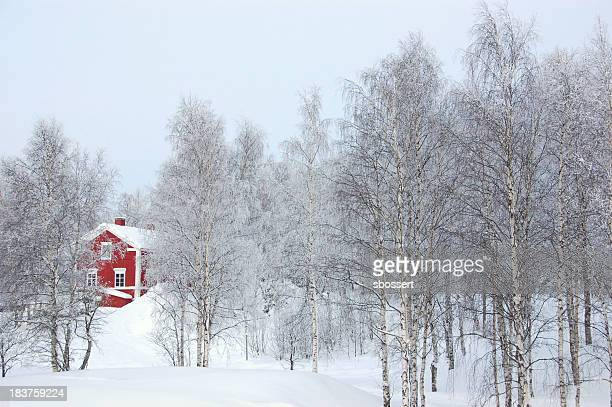 Red House im Winter