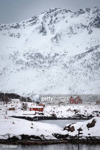"""red houses on senja island in northern norway during winter - """"sjoerd van der wal"""" or """"sjo"""" stock pictures, royalty-free photos & images"""