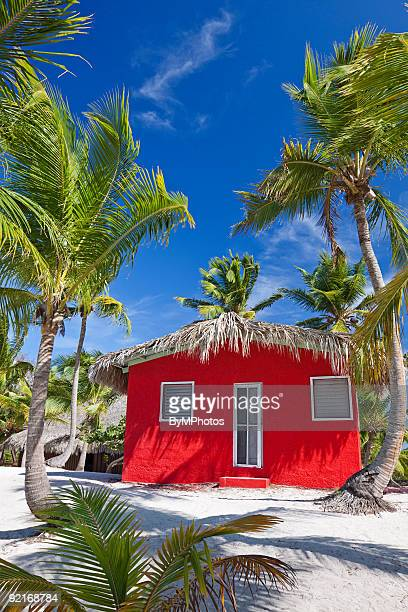 a red hut on a tropical island beach - catalina island stock photos and pictures