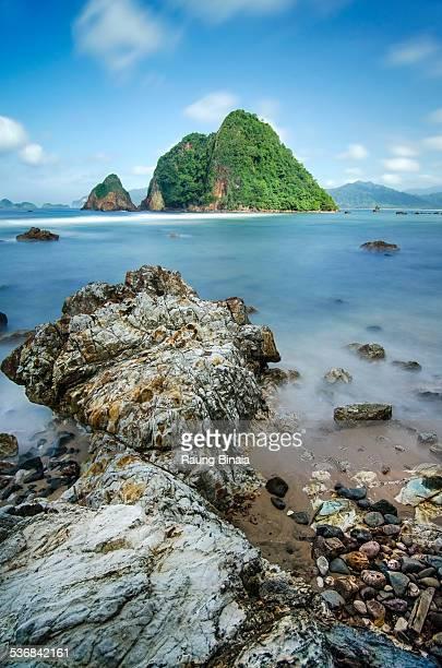 red island - falklandinseln stock-fotos und bilder