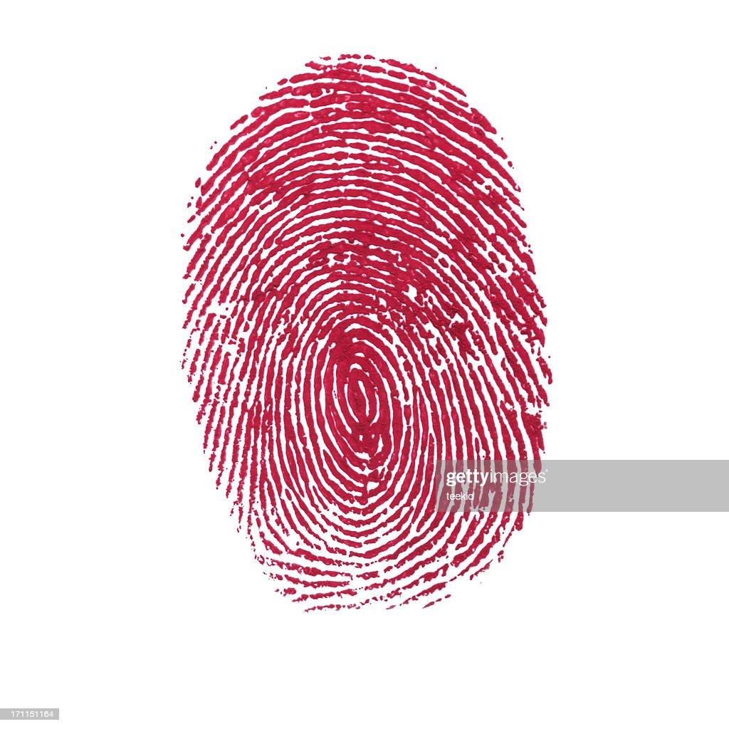 Red Isolated Fingerprint On White Background : Stock Photo