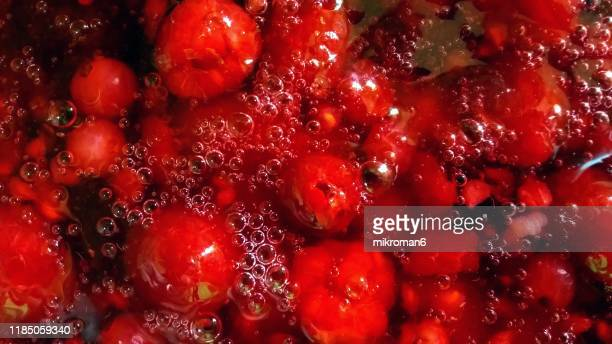 red jello dessert with berry fruit, homemade dessert - juicy stock photos and pictures