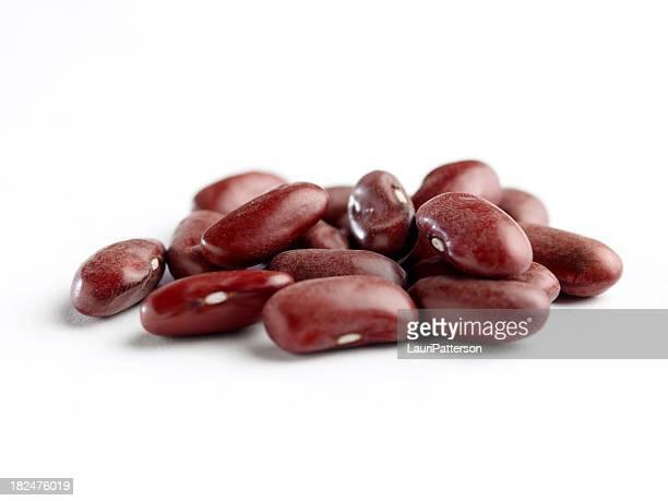 赤インゲン豆