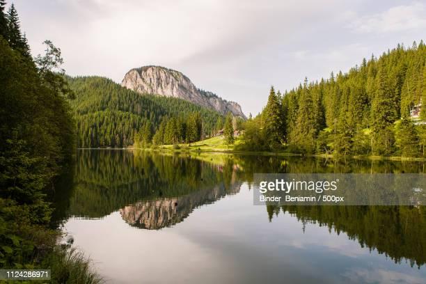 red lake romania europe - rumänien bildbanksfoton och bilder