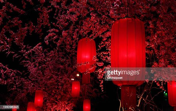 red lanterns - chinese lantern festival stock pictures, royalty-free photos & images