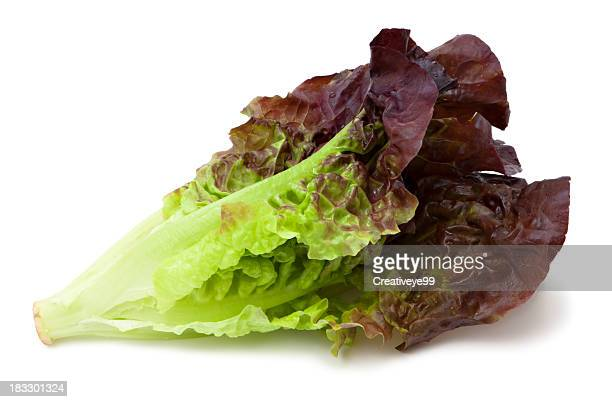 red leaf lettuce - leaf lettuce stock pictures, royalty-free photos & images