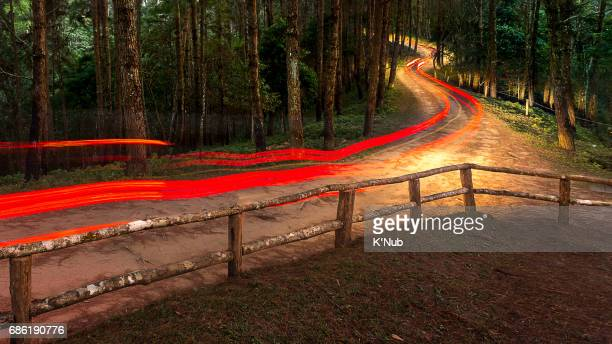 red light tail of car run in curve dirt road in tropical forest on mountain