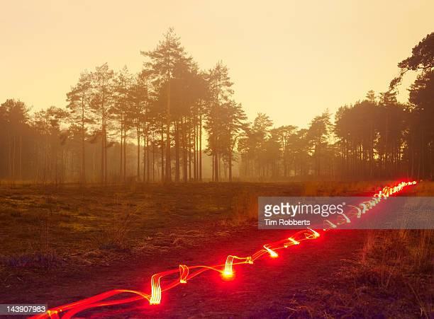 Red light trail in misty heathland.