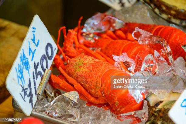 red lobster for sale at tsukiji fish market, tokyo, japan - yōshoku photos et images de collection