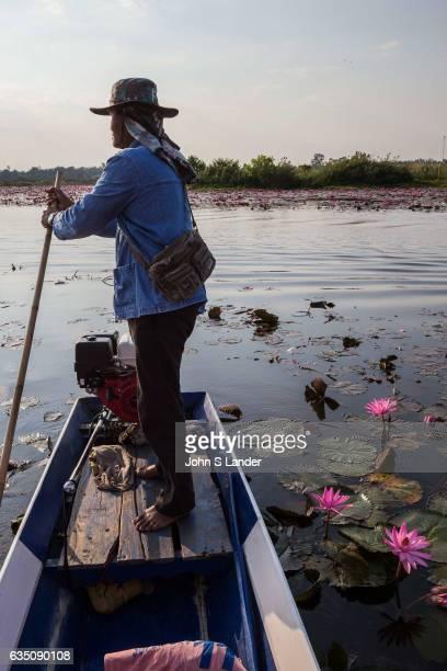 Red Lotus Lake Kumphawapi near Udon Thani is a special lake officially called Nong Han Kumphawapi though Thai locals call it Talay Bua Daeng meaning...