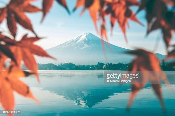 red maple leaves and mt fuji, japan - paisajes de japon fotografías e imágenes de stock