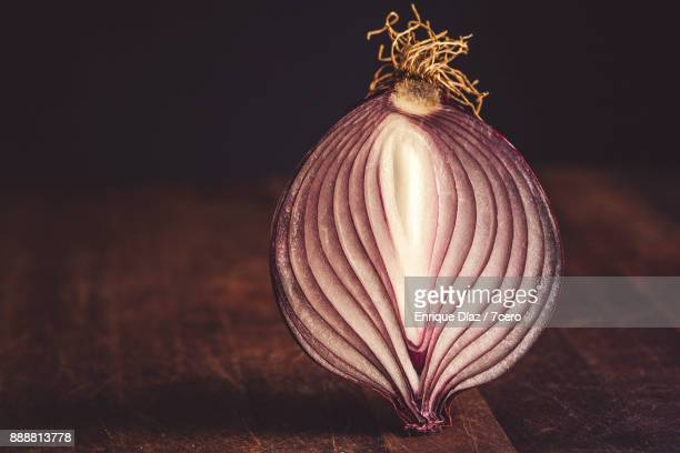 red onion still life - clitoride foto e immagini stock
