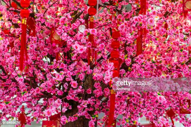 Red packets containing monetary gifts on peach tree