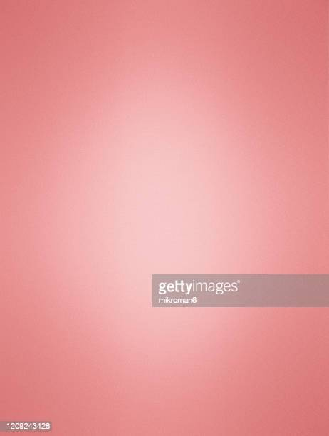 red paper background - studio shot stock pictures, royalty-free photos & images